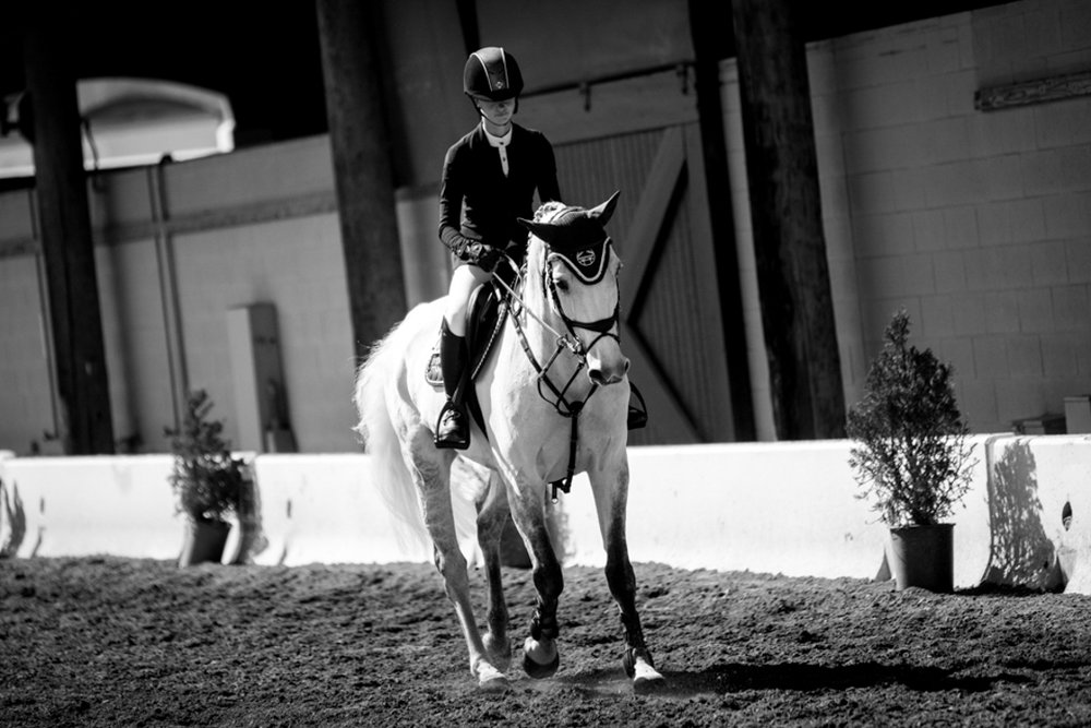 Jenn Gates and Luftikus S at the Del Mar International Horse Show. Photo by Ashley Neuhof Photography.