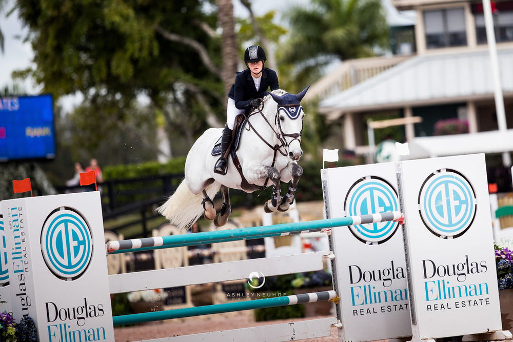 Jenn Gates and Luftikus S at Winter Equestrian Festival 2019. Photo by Ashley Neuhof Photography.
