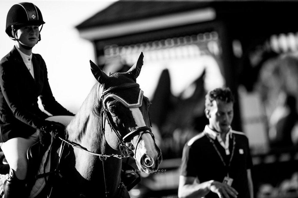 Jenn Gates and Oaks Redwood at Winter Equestrian Festival 2019. Photo by Ashley Neuhof Photography.