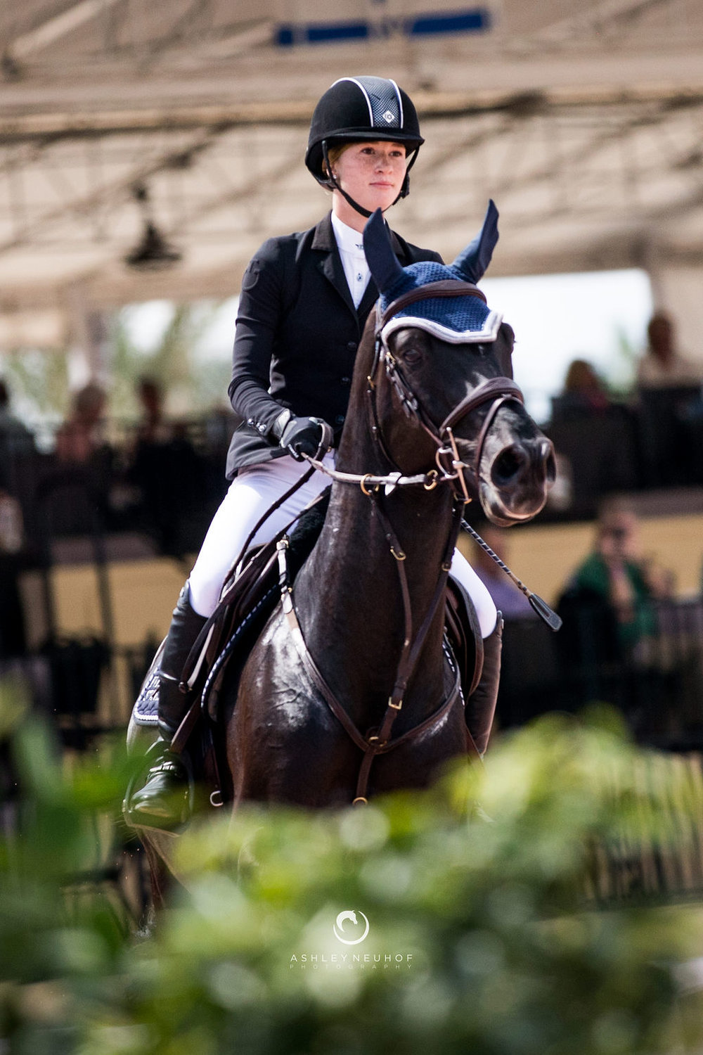 Jenn Gates and Pacific des Essarts at Winter Equestrian Festival 2019. Photo by Ashley Neuhof Photography.