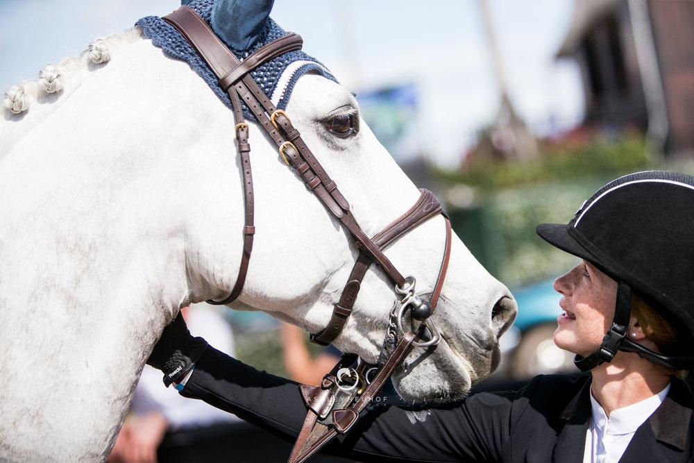 Winter Equestrian Festival 2019