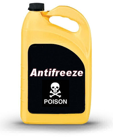 antifreeze_jug.jpg