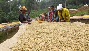 Ethiopia Gera 3.jpg