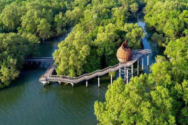 Sungei Buloh Wetland Reserve — Hello! Singapore Tours