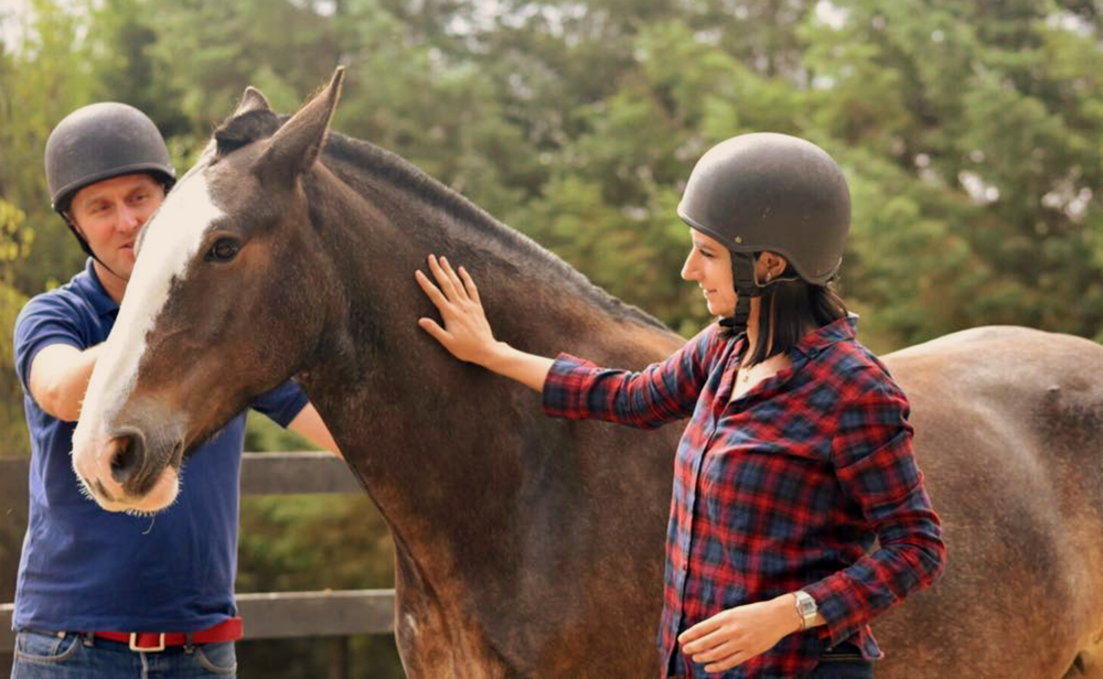 Horse-assisted corporate trainings - Get some fresh air, step away from your routine and unlock potentials with this unique experience. This is a real eye-opener and motivational opportunity for forward-thinking leaders, teams how to manage change effectively! Learn more >>
