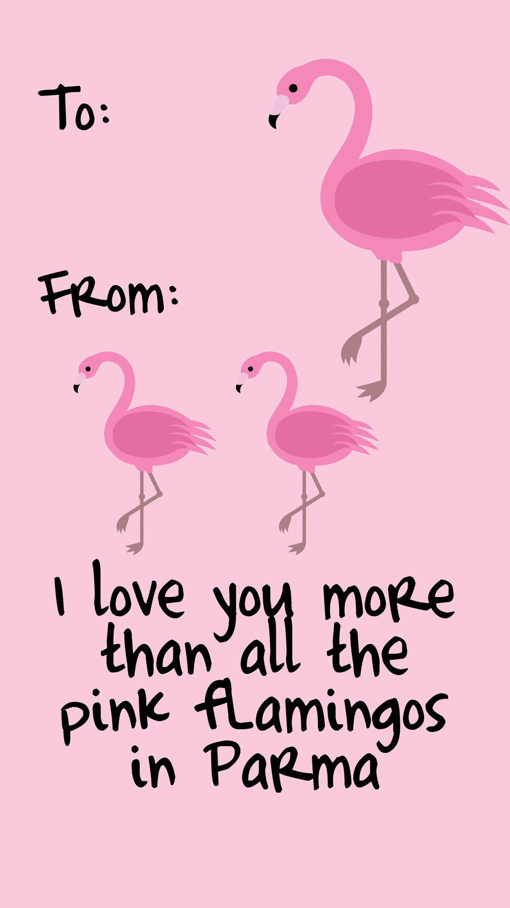 flamingostory.JPG