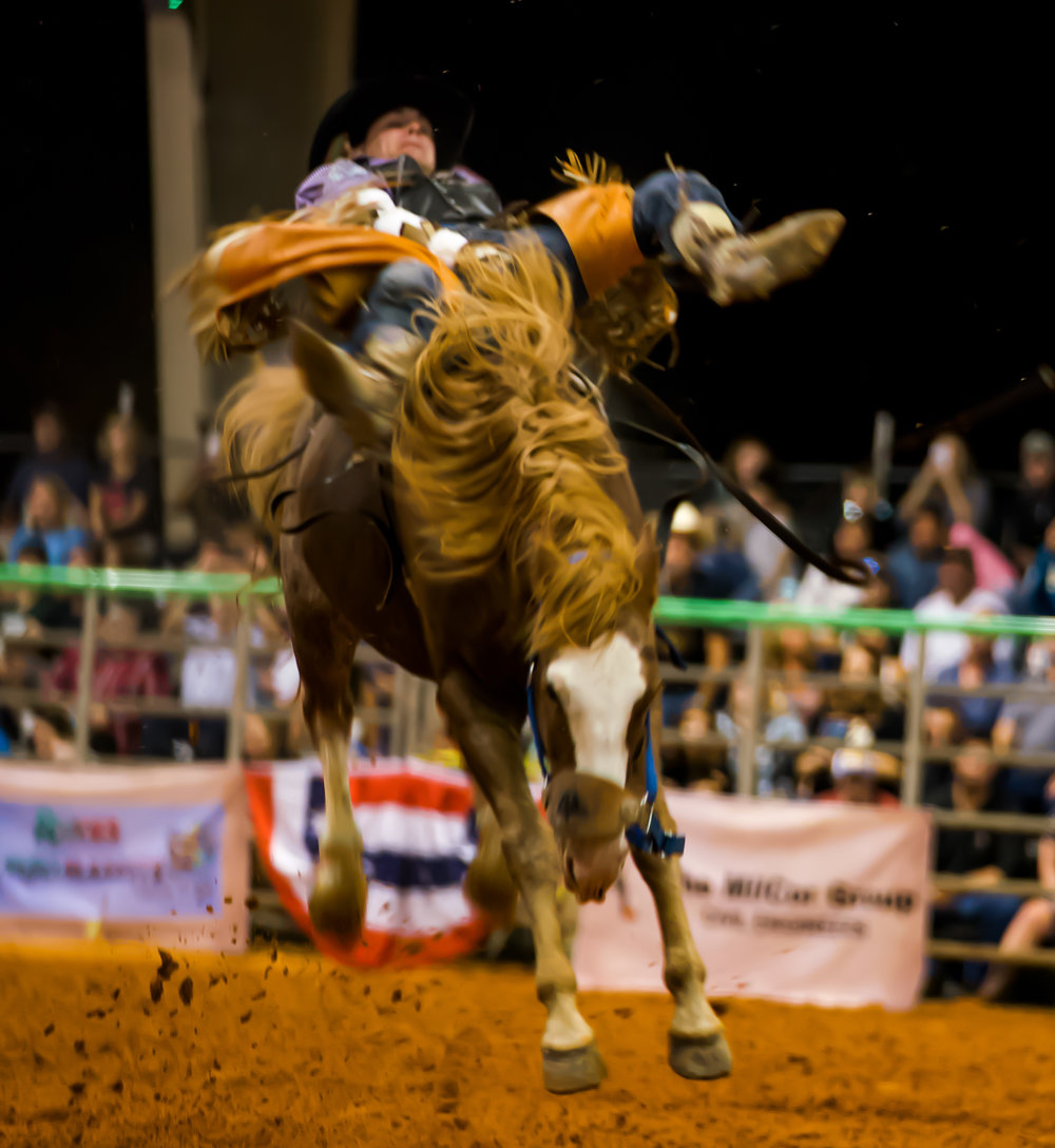 Rodeo-01668.jpg
