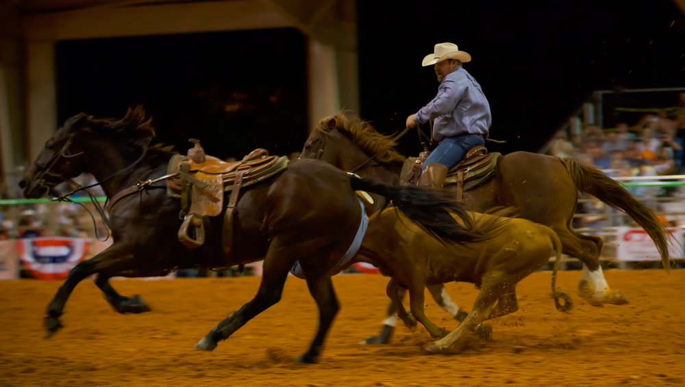 Rodeo-01712.jpg