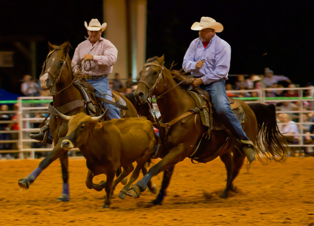 Rodeo-01713.jpg