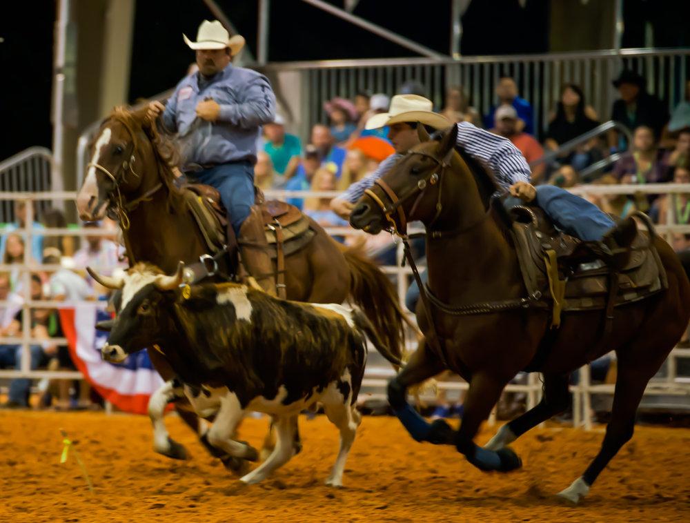 Rodeo-01731.jpg