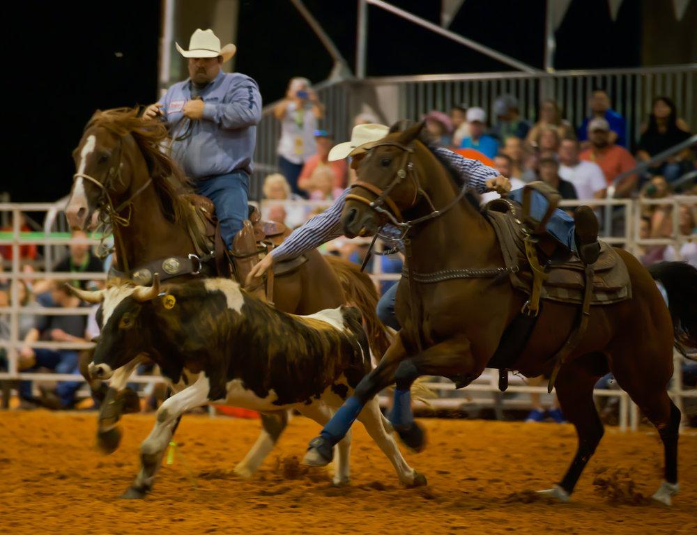 Rodeo-01732.jpg