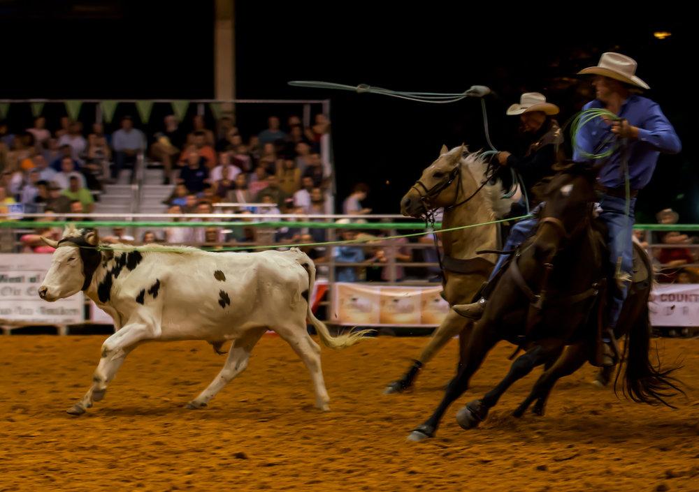 Rodeo-01798.jpg