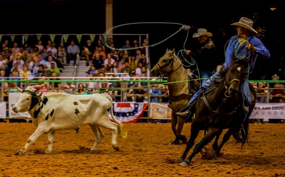 Rodeo-01799.jpg