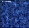 TSI* Gothic Blue