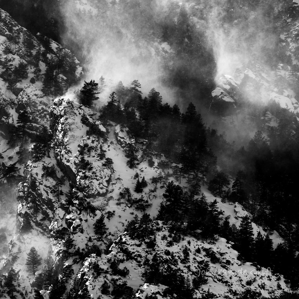 Wind whips the snow through evergreen trees on a mountain in winter.