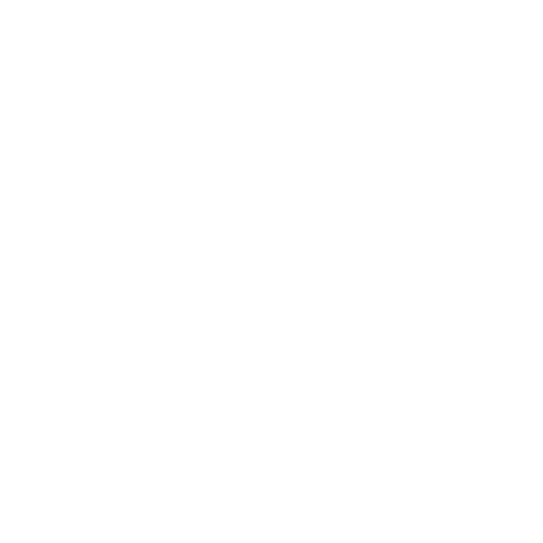 Camp Wellness