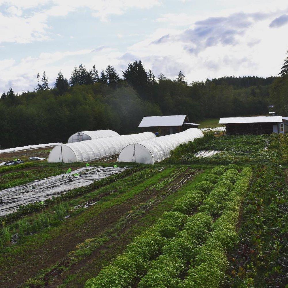 farm_vista_2018.jpg