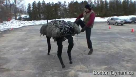 Bad doggy -
