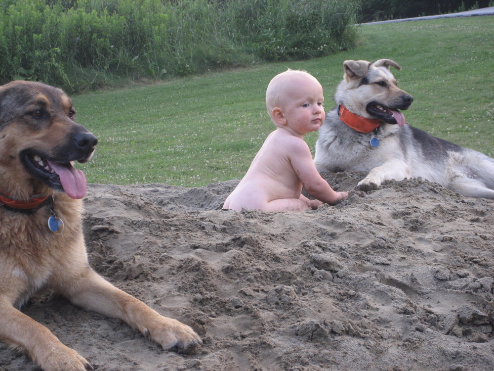 Our dogs Franny and Luna with my nephew.