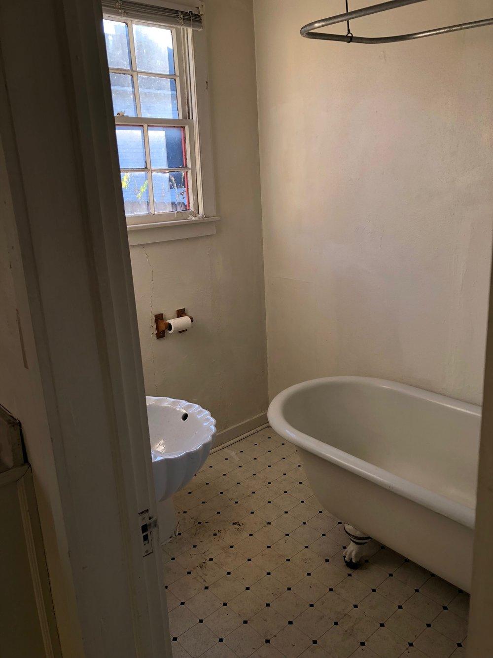 Bathtub (Before)