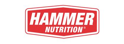 logo_hammer.jpg