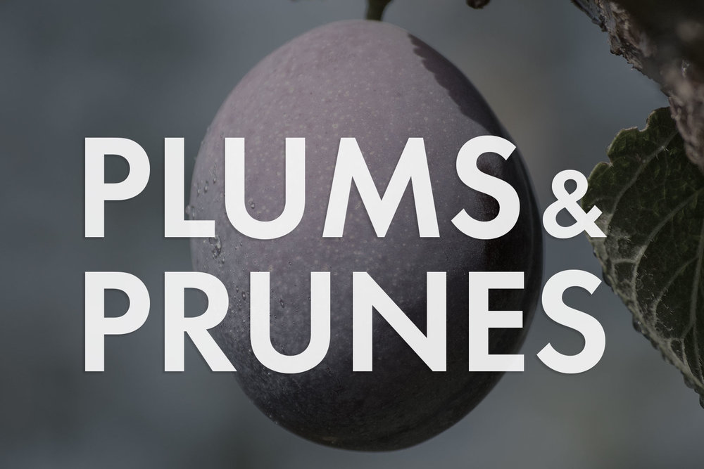 VWN-Web-Inventory_Thumnails-Plums.jpg