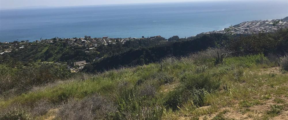 Los Liones Canyon Los Angeles CA