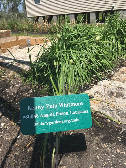 zulu gardens - 168 copy.jpg
