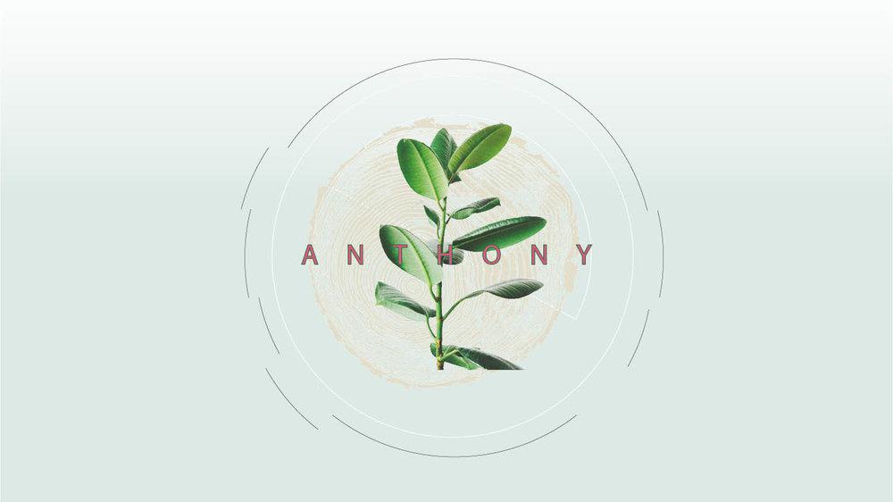 Anthony11.jpg