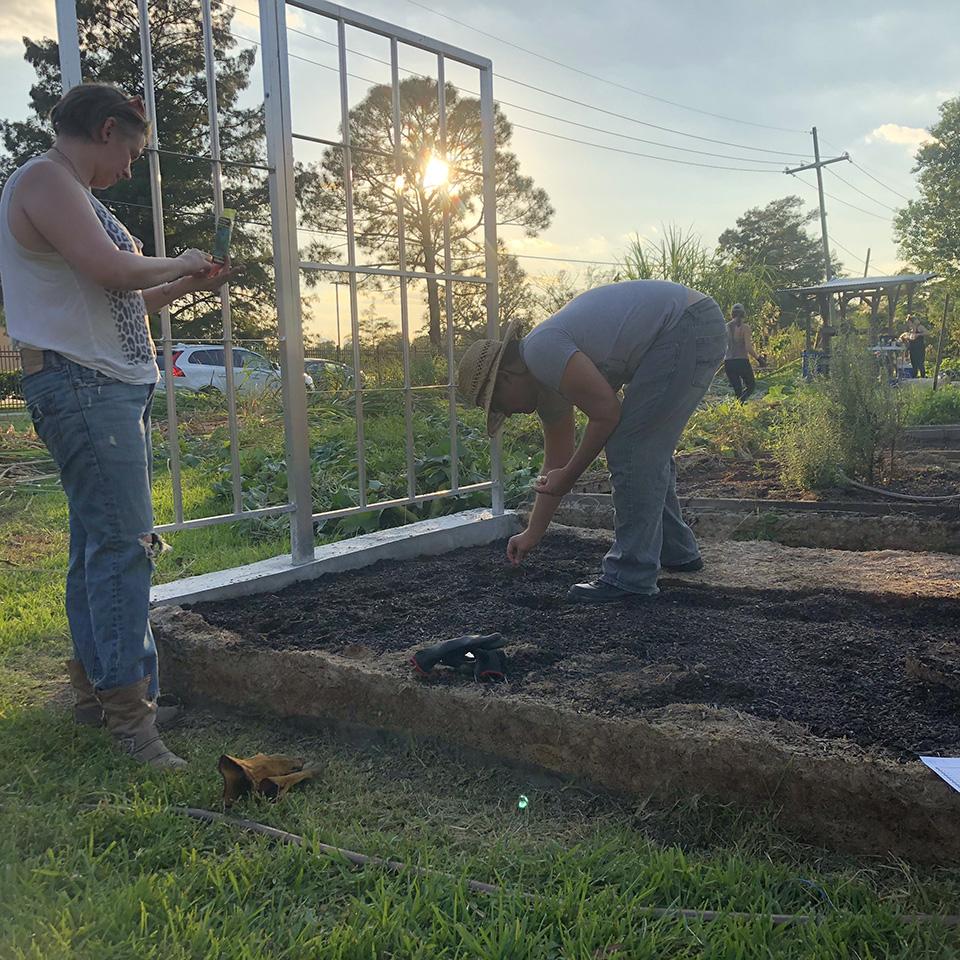 Steven Ray planting.jpg