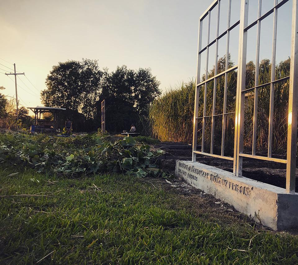 Andry steet sunset bed.jpg
