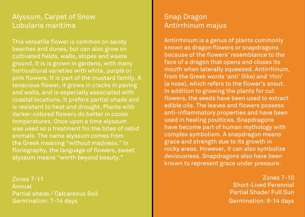 flower descriptions .png