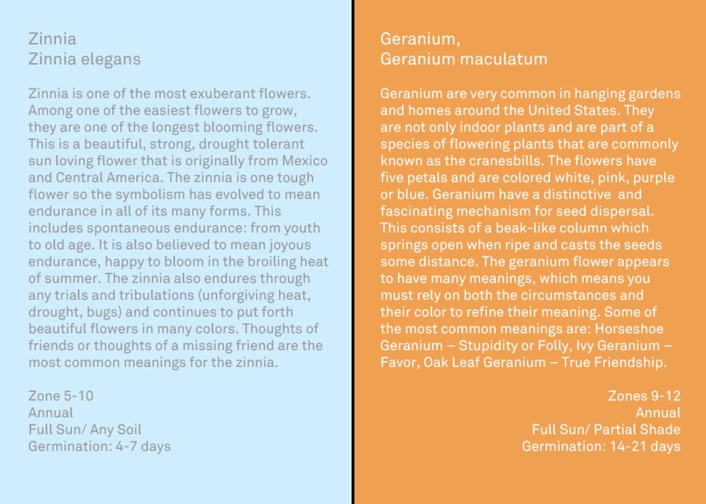 flower descriptions 6.png