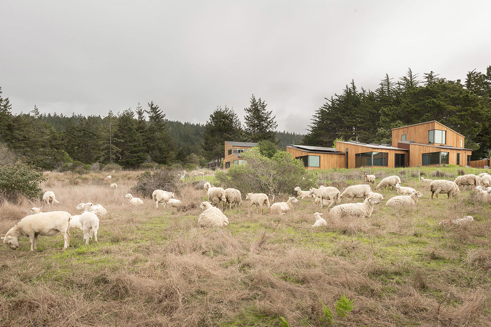 Fisch House at The Sea Ranch by Bergtraun Studio