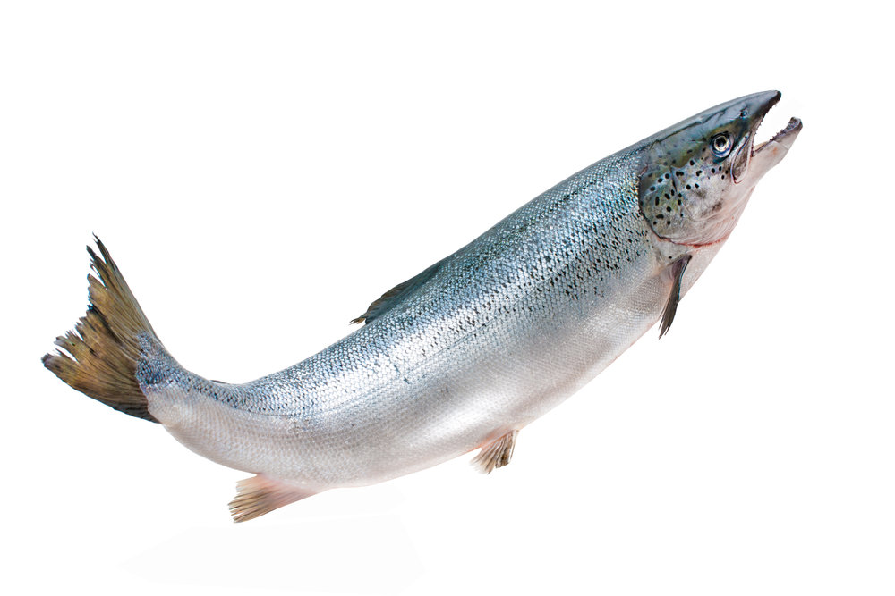 Super DNA(Deoxyribonucleic Acid)+ - Wild Alaskan Salmon Milt Extract, Deoxyribonucleic Acid.