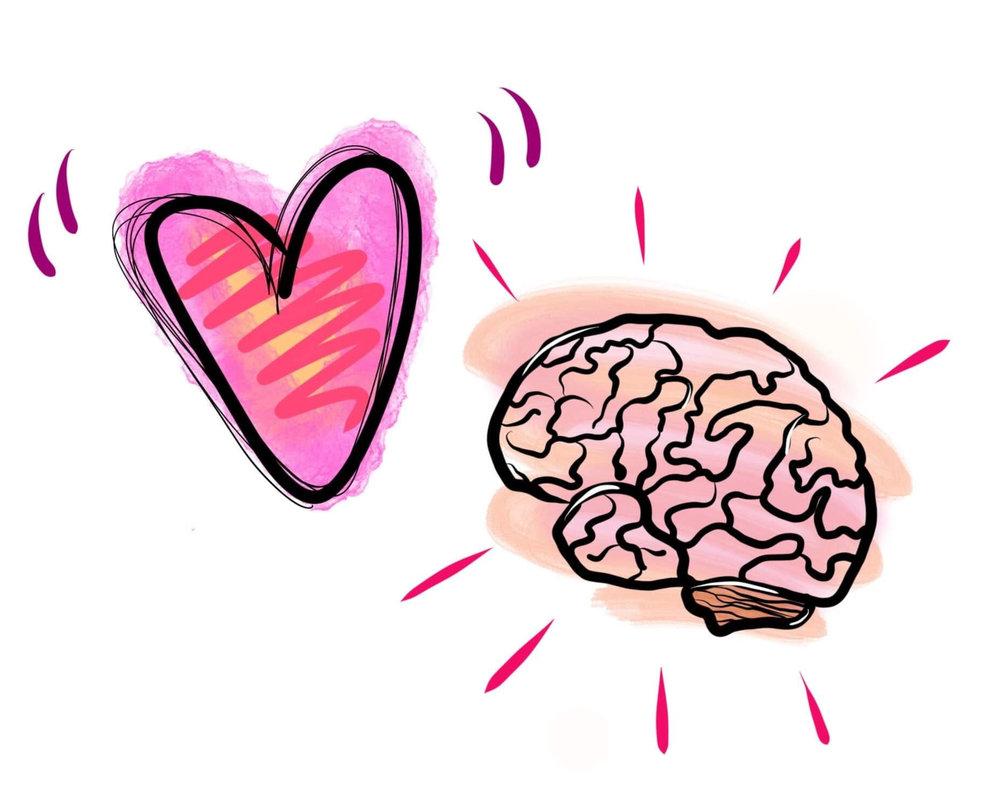 hjärta hjärna.jpg