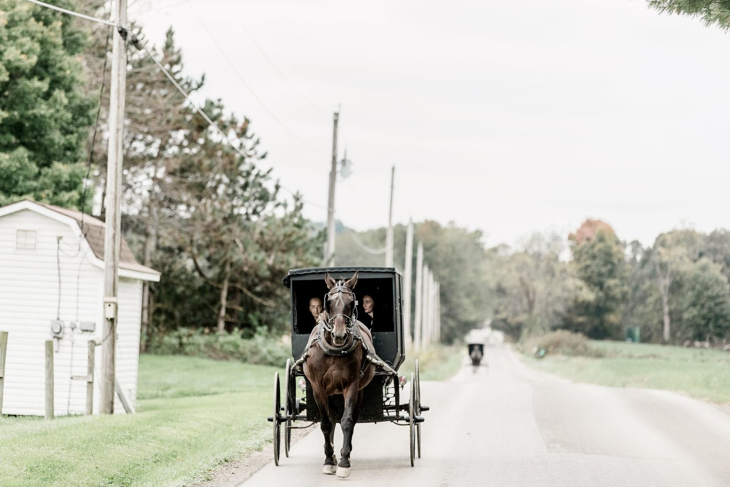 The Amish Culture — Ohio Amish Country Farmers Market
