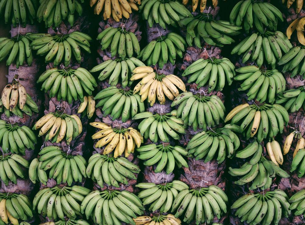 Bananas in a market in Itacaré, Bahia - Brazil