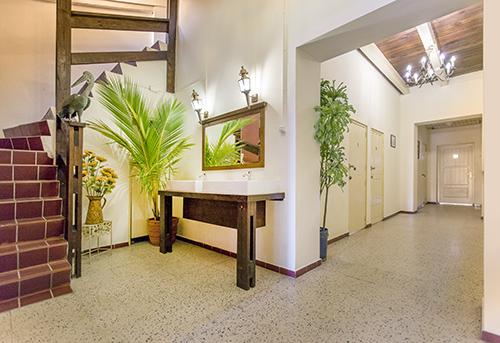 home-TAGEDESK-Curaçao-stagehuizen-Pelikaan-header.jpg