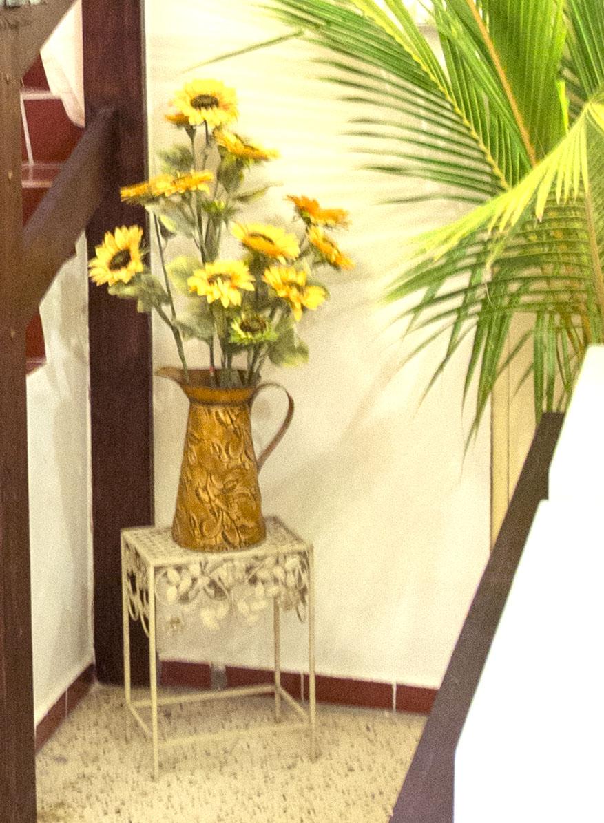 StageDesk-Curaçao-Stagehuis-BergAltena-Pelikaan-huis30.jpg