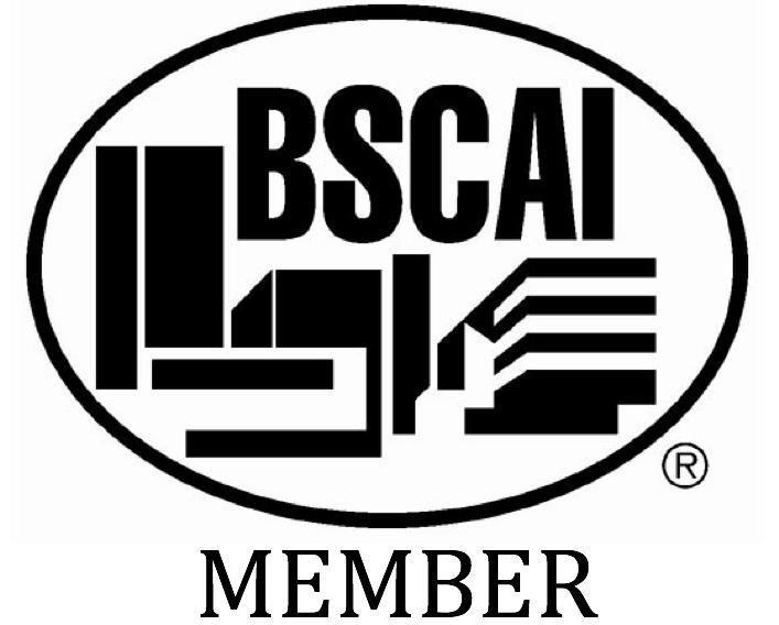 bscai-logo.png