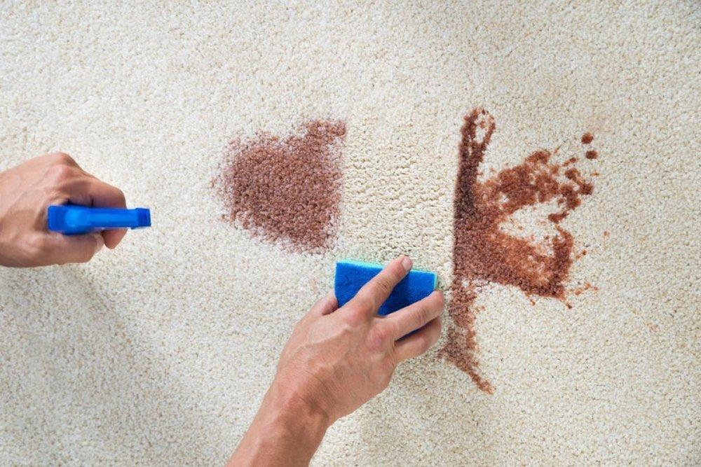 New Carpet Stain.jpg