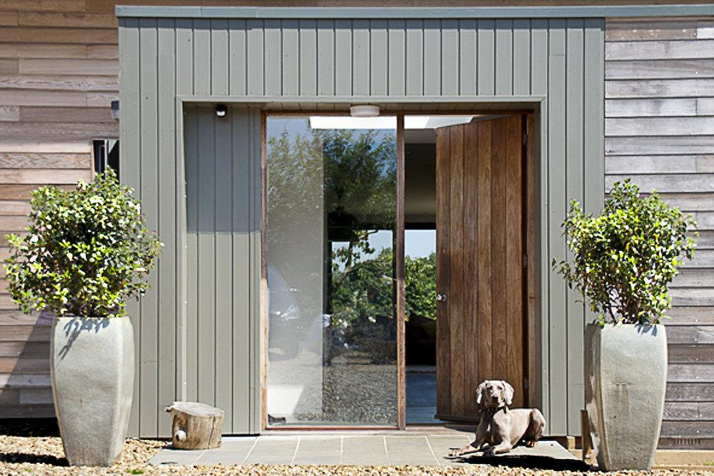 Door with dog 300.jpg