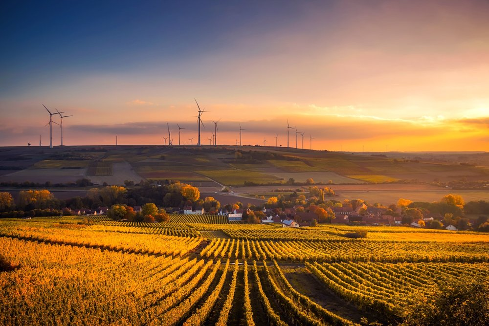 Agricultural fields and wind farm in the sunset