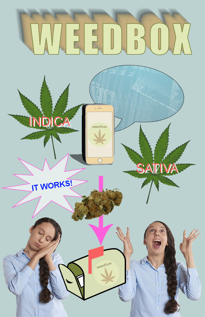 Weedbox - A prototype for my Weedbox app. In our Foundations of Digital Media class, we were asked to imagine a future artifact and how it might be used. With weed recently being legalized in Canada (Oct. 2018), it's likely that the industry with experience massive technological growth within the next decade.
