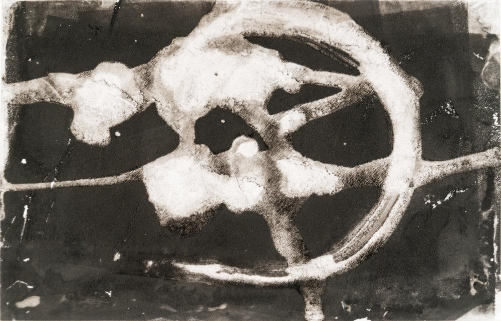 """Nautilus Plate  8""""x12"""""""