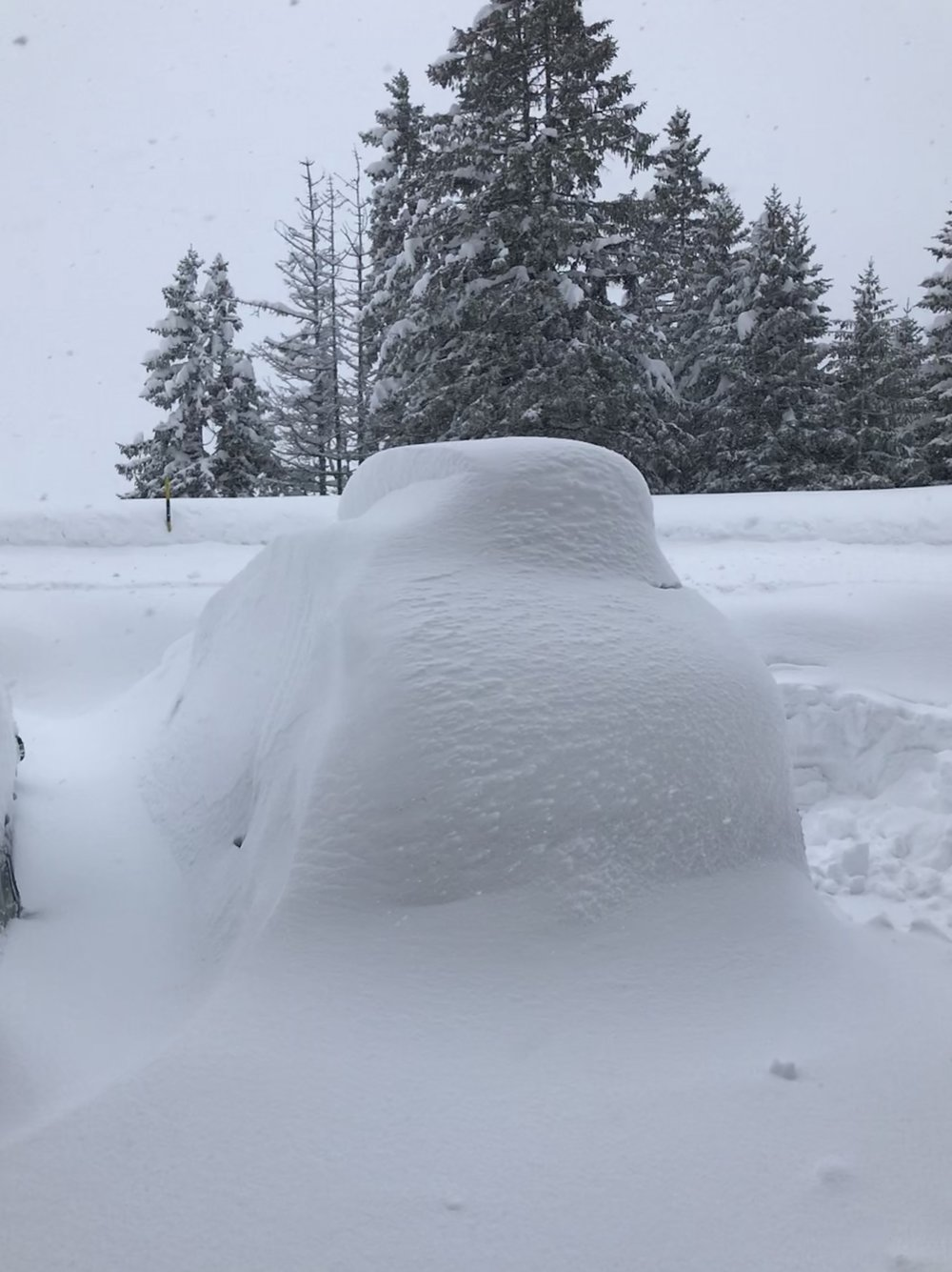 Schneefall vom Freitagabend bis Sonntagnachmittag (Foto ©Tom Pellny)