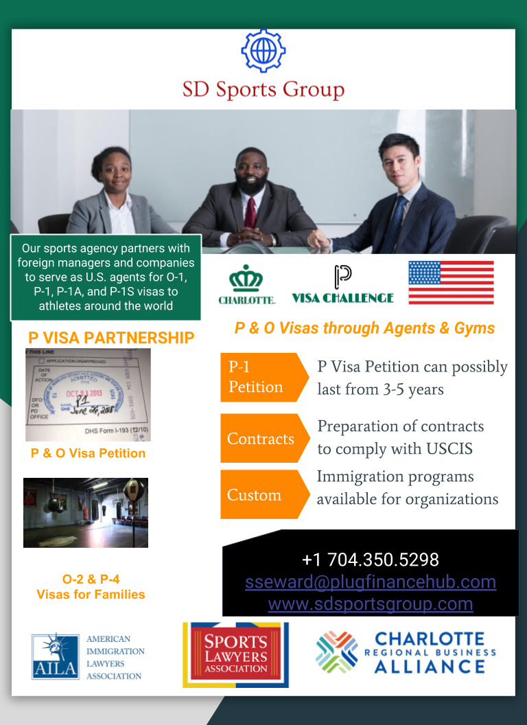 P visa Challenge - One Pager (1).png
