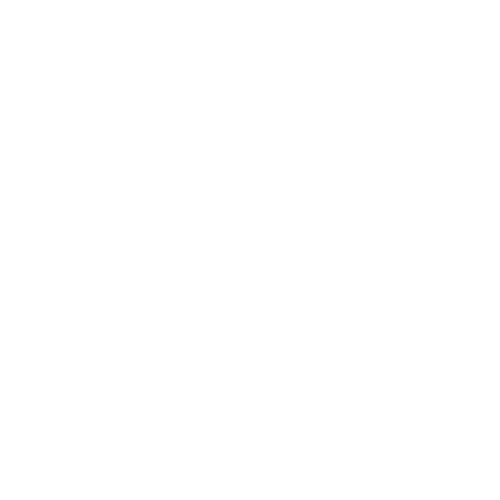 Pinnacle Campaign Strategies