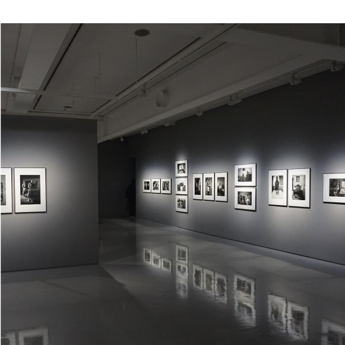 Art-Exhibitions4.jpg
